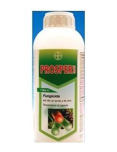 PROSPER 300CS LT.1 miglior prezzo