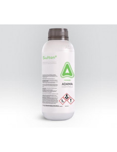 SULTAN LT1 (BUTISAN)