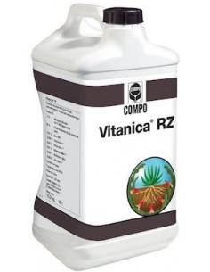 VITANICA RZ LT.1 vendita online