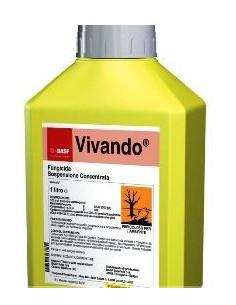 VIVANDO ML.250