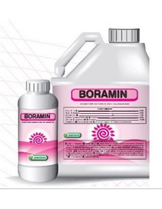 BORAMIN KG.1 miglior prezzo