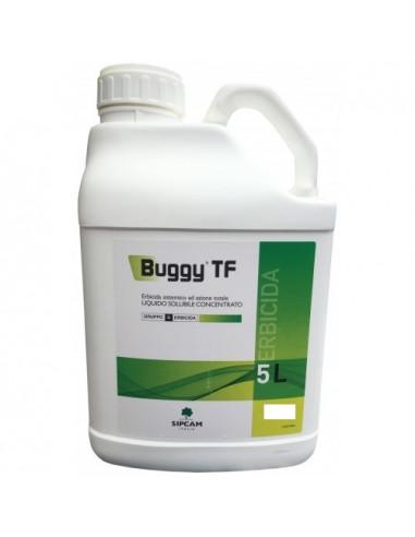 BUGGY G LT.20