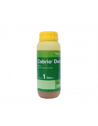 CABRIO DUO LT.1