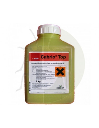 CABRIO TOP KG.1 vendita online