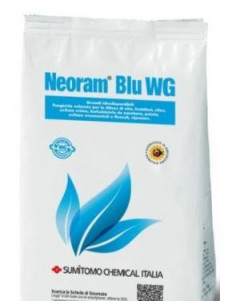 NEORAM BLU WG KG.1 vendita online