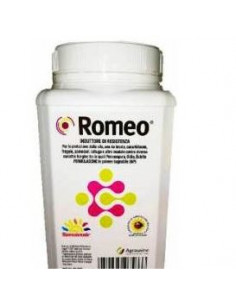 ROMEO KG.1 vendita online
