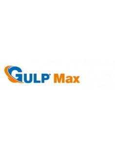 GULP MAX BAGNANTE LT.5
