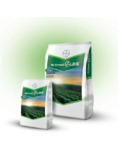 R6 ALBIS KG.1 vendita online