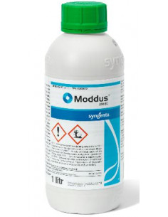 MODDUS LT.1 vendita online