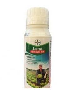 LUNA SENSATION  ML.500