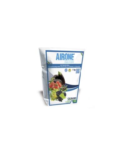 AIRONE EXTRA KG.1 vendita online