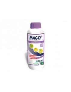 MAGO LT.1