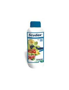 SCUDEX LT.1 Miglior Prezzo
