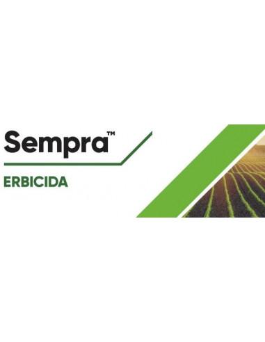 SEMPRA GR.150 (PERMIT) Miglior Prezzo