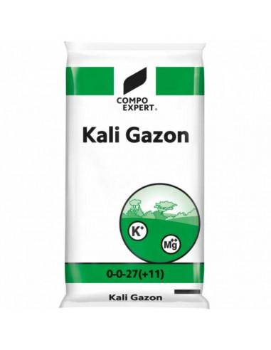 KALI GAZON 0-0-27 (+10MgO ) KG.25 vendita online