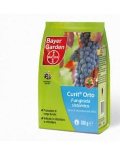 CURIT ORTO GR.500 miglior prezzo