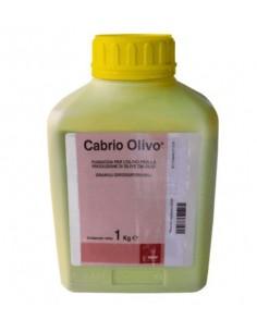 CABRIO OLIVO KG.1 Miglior Prezzo