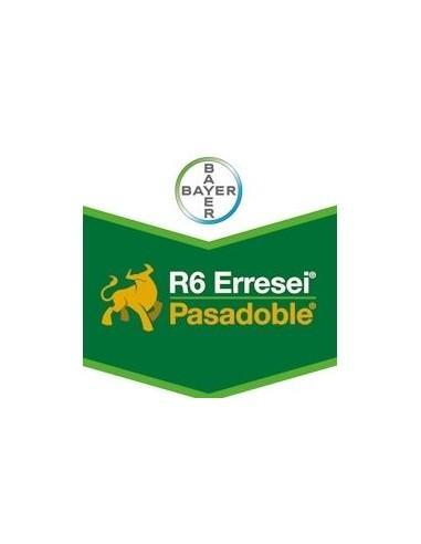 R6 PASADOBLE WG KG.1 Miglior Prezzo