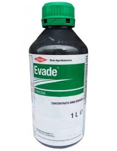 EVADE LT.5 miglior prezzo