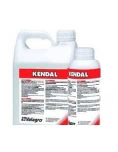 KENDAL LT.1