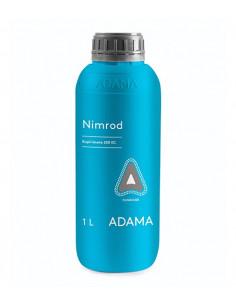 NIMROD 250 EW Lt. 1 vendita online